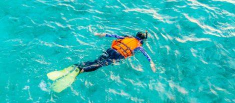 Dive Snorkeling Trips Key Largo